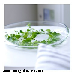 Bát thả hoa Ikea - BLOMSTER (Bowl, clear glass)